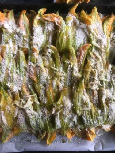 strati di fiori di zucca spolverati con pangrattato e parmigiano